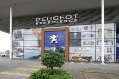 12_Peugeot_11052011Carel_Breukelen_