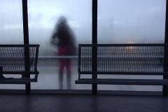 Regen en mist