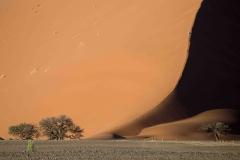 2017-meest verrassende foto-FredB-Namib