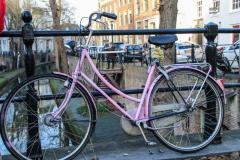 sized_Elly 1 fietsen