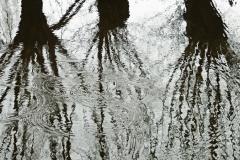 2018-reflectie-FredB-IMG_4516