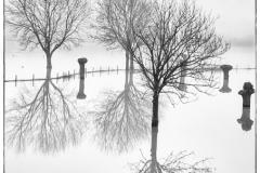 2018-reflectie-RonN-FRN1708