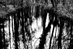 2018-reflectie-gerhardh- 0263-1