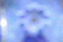 17-2019-Bewustslechtefoto-MarjavK-IMG_0850